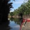 Deluxe Mekong Delta Cruise_2.jpg