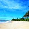 coconut coast.jpg