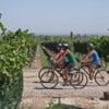 Wine-touring_on_bikes.jpg