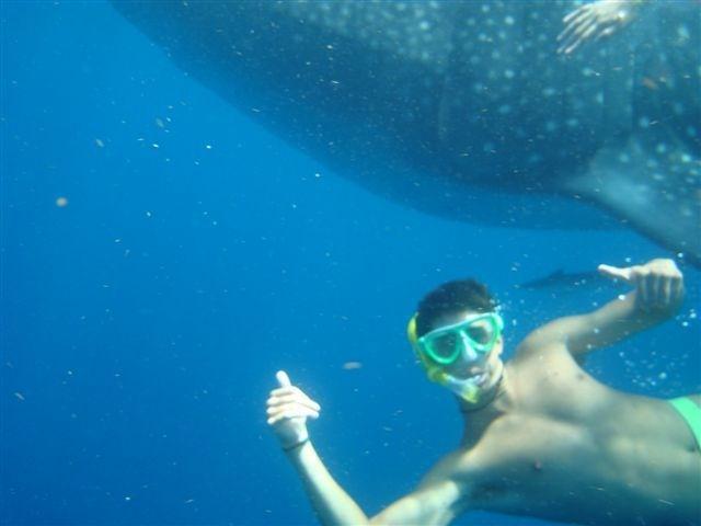 Sunbathe, Snorkel, Scuba Dive in Belize