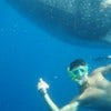 Snorkeling with Whale Shark [1].JPG