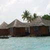 four-seasons-resort-maldives.jpg
