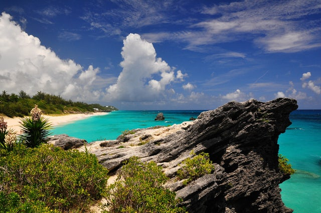 Tie the Knot at the Picturesque Beach in Bermuda: Jobson's Cove