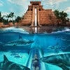 Atlantis-Paradise-Island-Bahamas 1.jpg