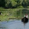 Danube Delta [4].jpg