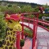 Giraffe_Legoland_02.JPG