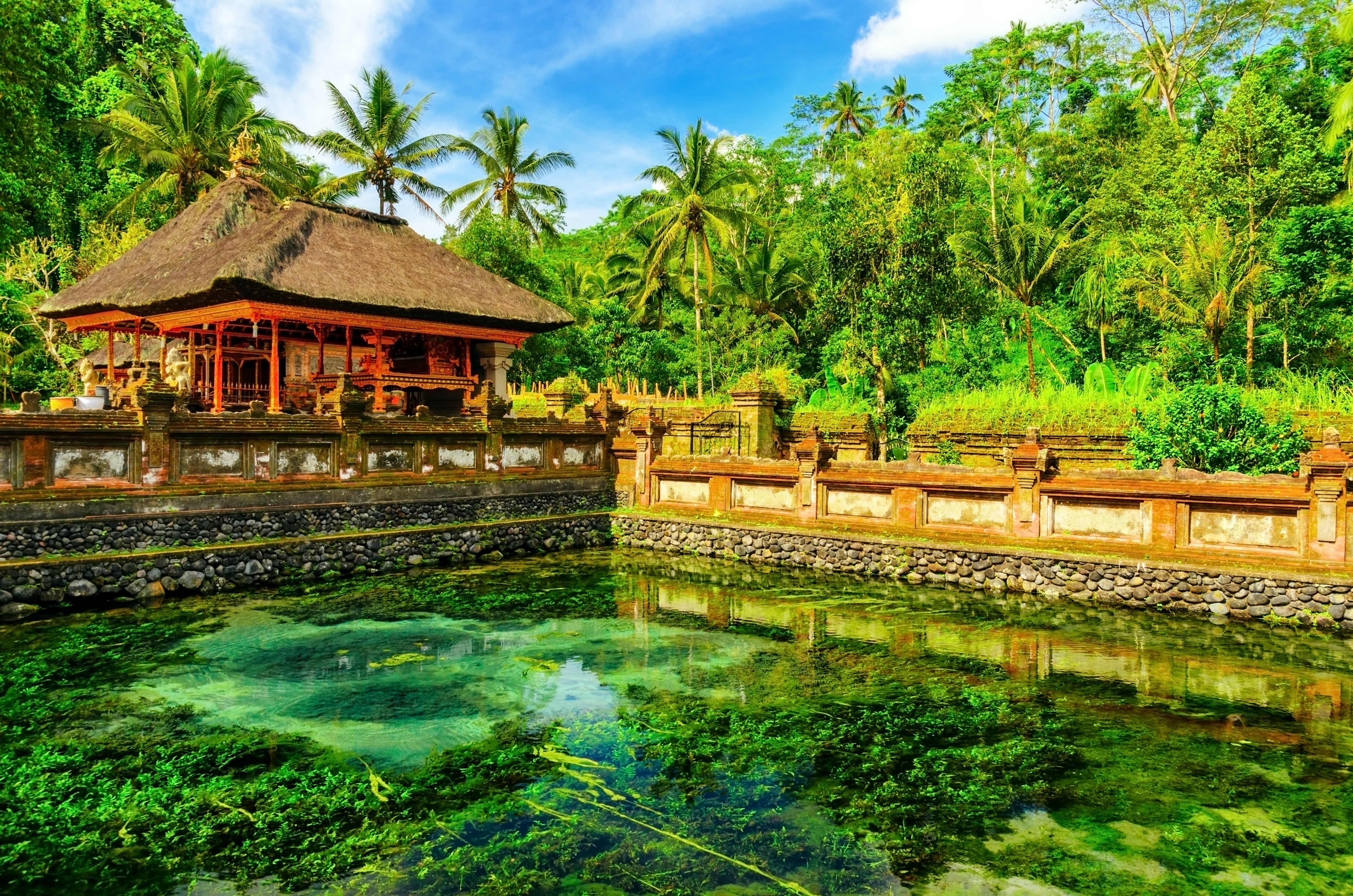 Fasinating history of Bali, Indonesia
