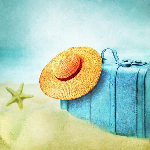 Tips on how to Maximize on your Vacation Time
