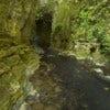 Waitomo Glowworm Caves [1].jpg