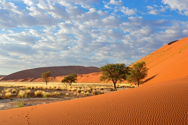 Travel By Train Through The Amazing Landscapes Of Namibia