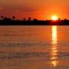 Zambezi River [1].jpg