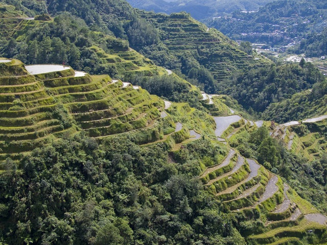 10 Interesting facts about the Banaue Terraces