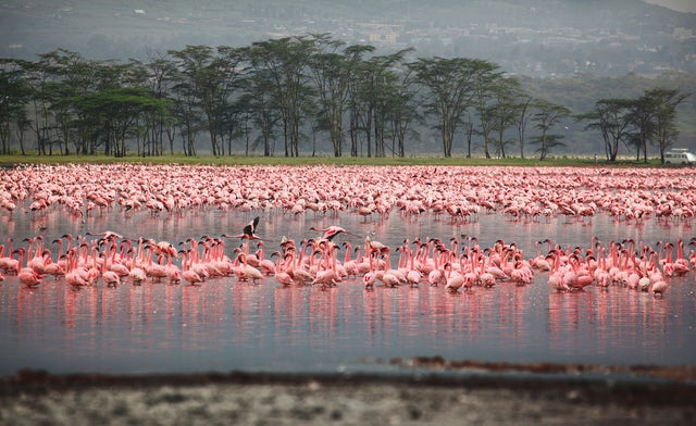 Top 5 Adventure Destinations in Kenya