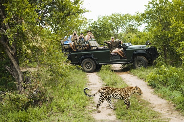 Top 5 Adventure Destinations in South Africa