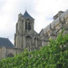 Saint Etienne Cathedral with a tree in foreground - Bourges - France..jpg