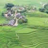 Rice Terraces in Northern of Vietnam.jpg