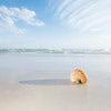 Generic Beach.jpg