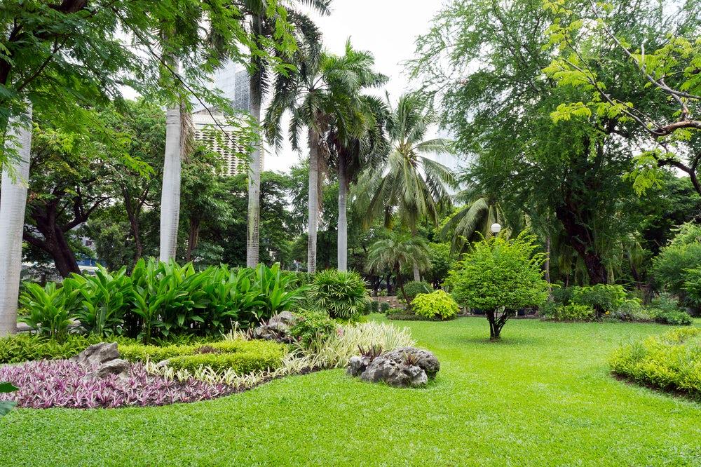 Melia jardines del ray for Jardines del rey