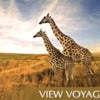 Oceania's Top 11 Most Popular Voyages from Around the World