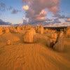 Pinnacles Desert - website.jpg