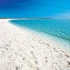 Shell Beach - Website.jpg