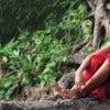 burma_myanmor_yangon_monk_tree_website.jpg