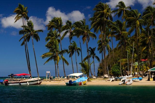 Explore Cap Maison in St. Lucia
