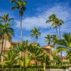Amazing view of caribbean resort with exotil tall palm trees.jpg