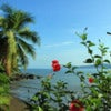 View to Drake Bay, Osa Peninsula, Costa Rica.jpg