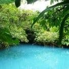 Arenas Del Mar Beachfront and Rainforest Resort in Costa Rica