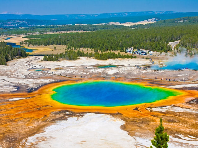 Image result for yellowstone national park facts