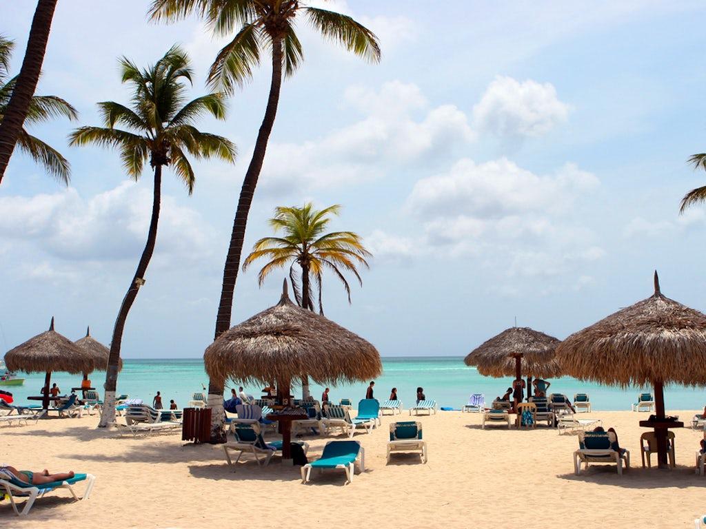 Divi aruba phoenix beach resort - Divi aruba beach ...