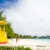 Barbados  copy.jpg