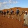 187 20140912 Erg Chebbi - camel ride.JPG