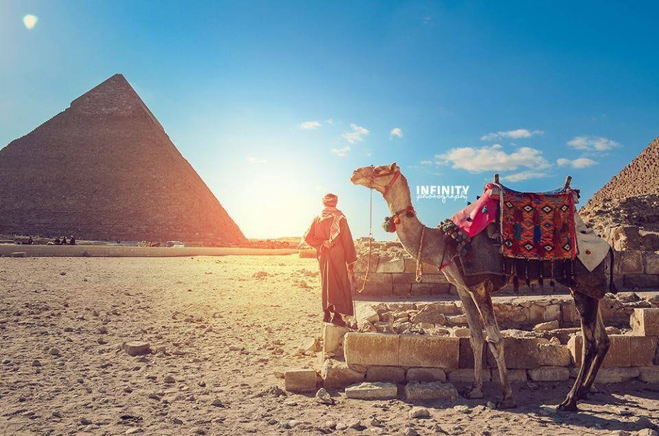Day Tour to Pyramids of Giza & Egyptian Museum