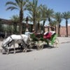 loveMorocco5.jpg