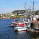 Experience Newfoundland and Labrador this Summer on an Escorted Tour!