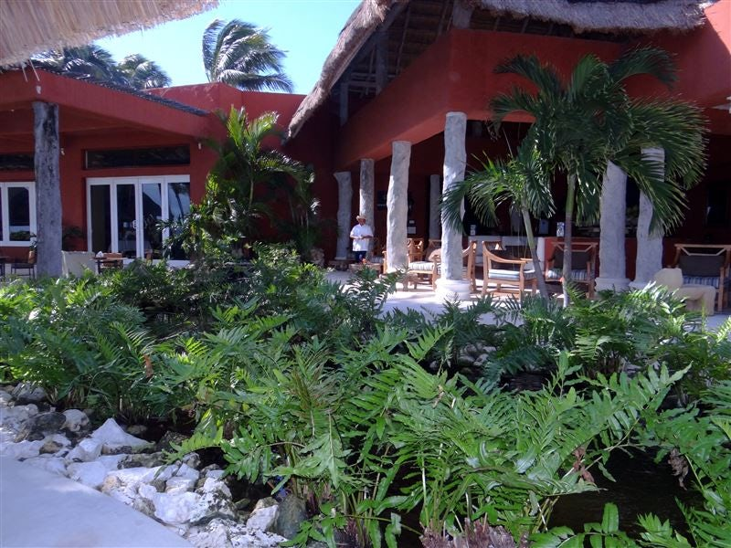 View to La Canoa Restaurant from Hippo Bar.jpg