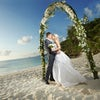 Say I Do in Hawaii