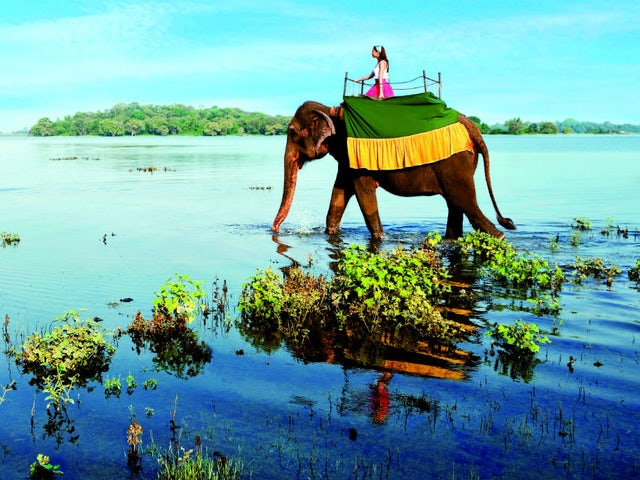 Experience the magic of Sri Lanka