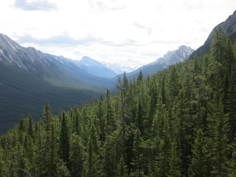 Rocky Mountaineer Scenery of Banff