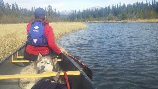 Taye Lake - Canoe & Hiking