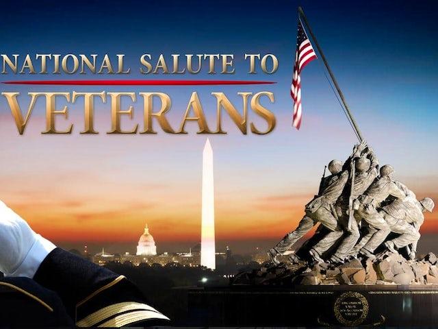 veterans-day-marine salute.jpg