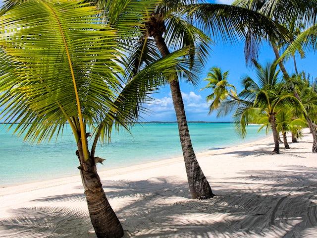 Banner-Beach-at-the-Bahamas-Island-of-Andros.jpg