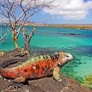Machu Picchu & The Galapagos Islands
