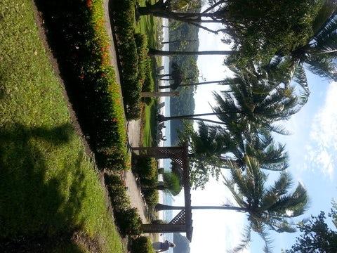 Dreams Las Mareas in Costa Rica is the WOW Resort!