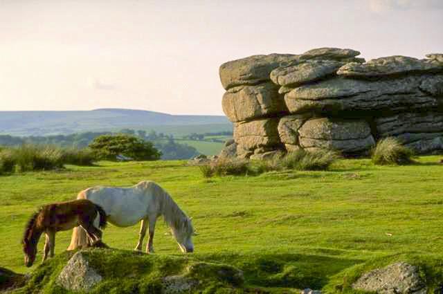 Plymouth - Dartmoor NP