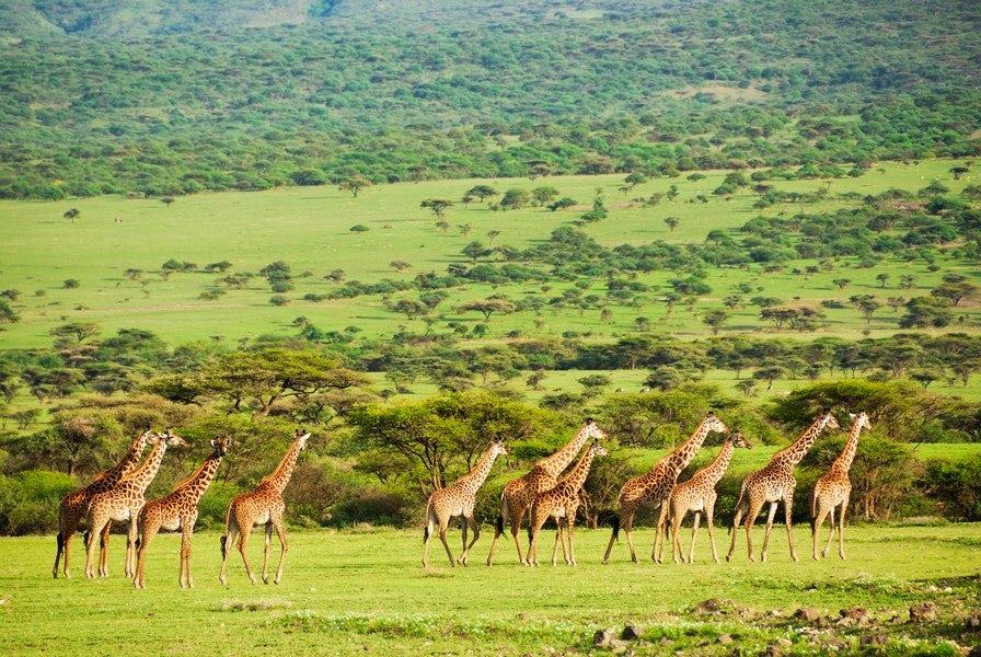 10 Days Kenya Cultural Safari