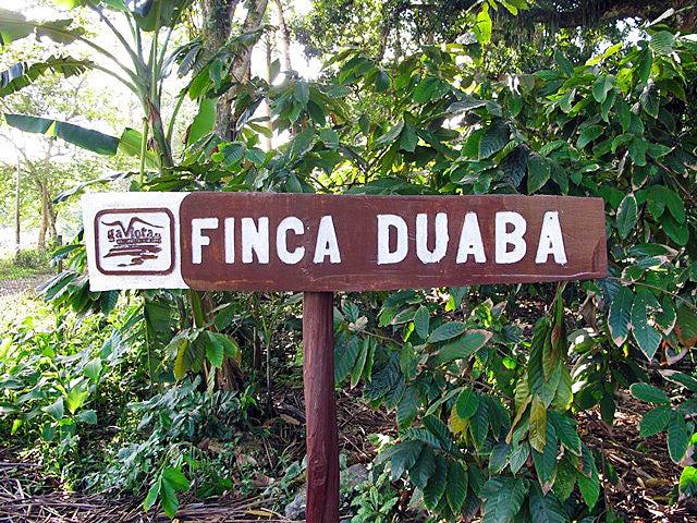 Finca Duaba Baracoa