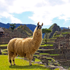 Peru: Ancient Land of Mysteries